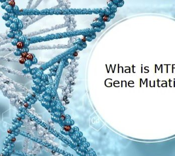 What is MTHFR Gene Mutation