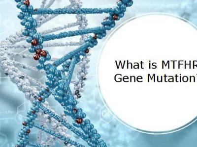 What is MTHFR Gene Mutation
