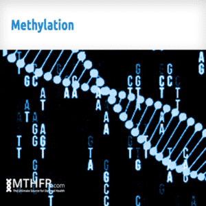 Methylation Banner