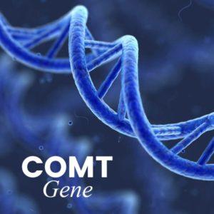 COMT Test Banner