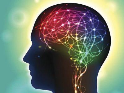 Cognitive performance MTHFR
