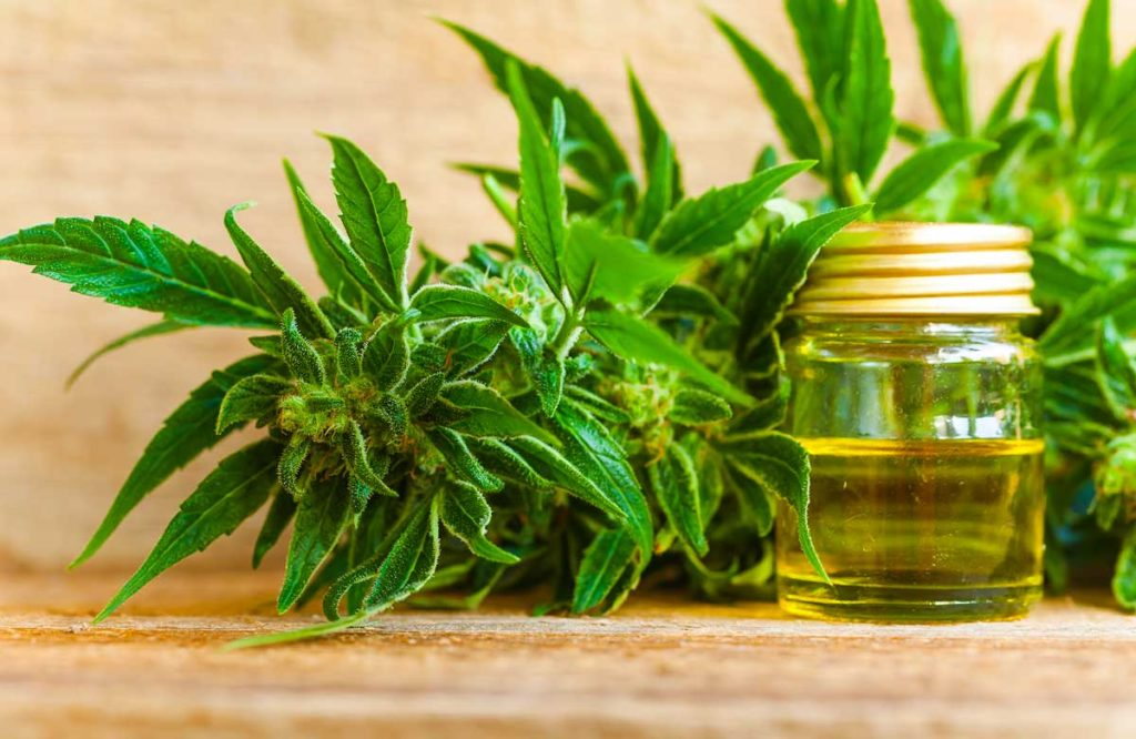 The Benefits of Using CBD Oil for Pain & Anxiety MTHFR